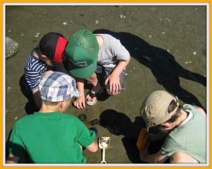 Sam, Khael, Carson & Oliver Digging For Sand Dollars