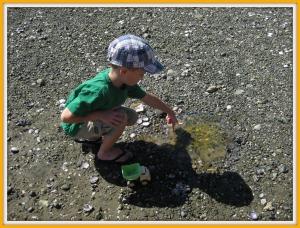 Sam Poking A Jellyfish